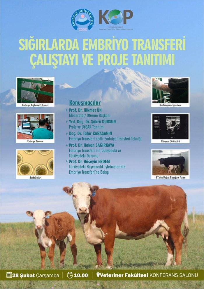 Sığırlarda Embriyo Transferi  Çalıştayı Ve Proje Tanıtımı
